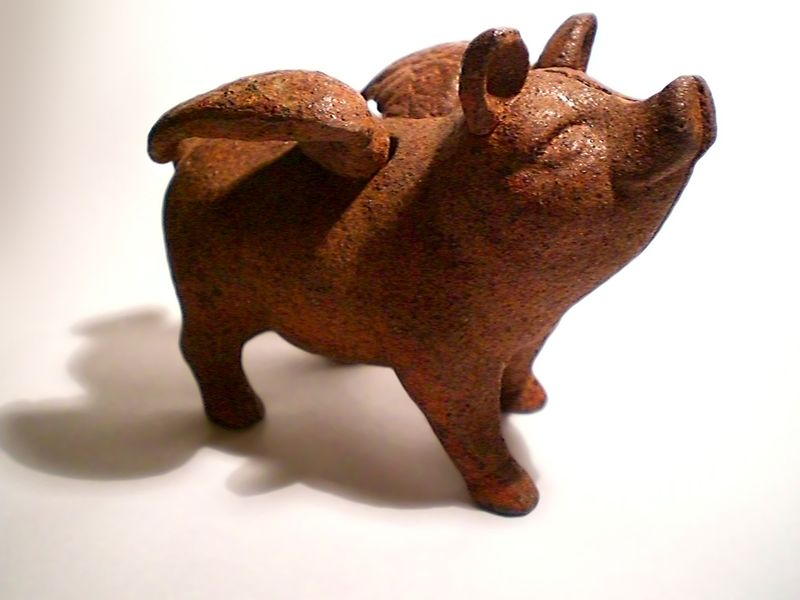 Image of Flying Pig